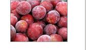 Vörös szőlő testpakolások
